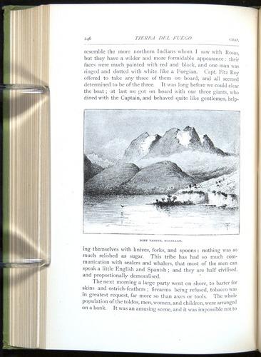 Image of Darwin-F64-1890-246