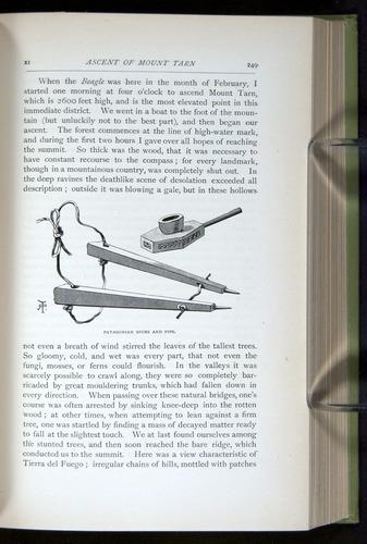 Image of Darwin-F64-1890-249