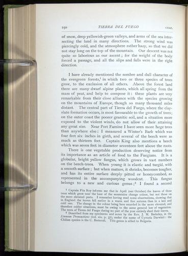 Image of Darwin-F64-1890-250