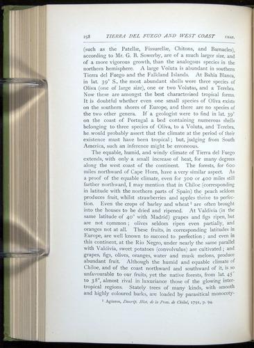 Image of Darwin-F64-1890-258