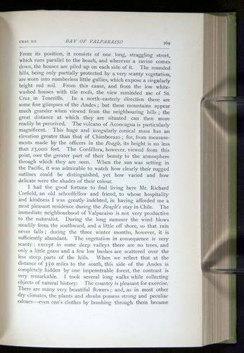 Image of Darwin-F64-1890-269