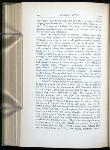Image of Darwin-F64-1890-272