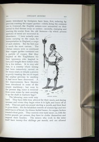 Image of Darwin-F64-1890-277