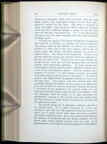 Image of Darwin-F64-1890-288