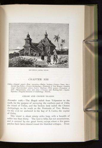 Image of Darwin-F64-1890-291