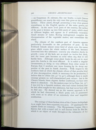 Image of Darwin-F64-1890-306