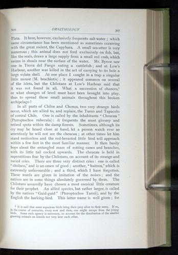 Image of Darwin-F64-1890-307