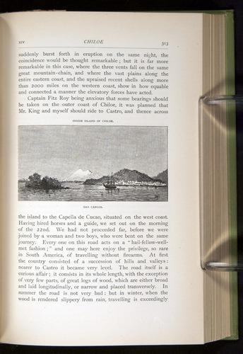 Image of Darwin-F64-1890-313