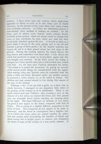 Image of Darwin-F64-1890-319