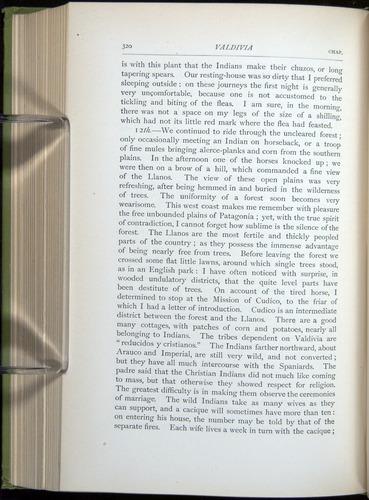 Image of Darwin-F64-1890-320
