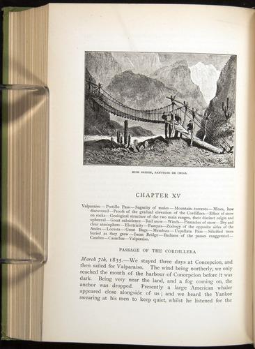 Image of Darwin-F64-1890-334