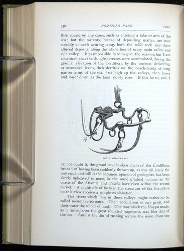 Image of Darwin-F64-1890-338