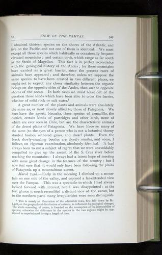 Image of Darwin-F64-1890-349
