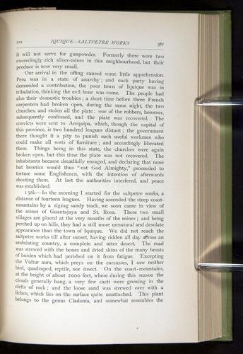 Image of Darwin-F64-1890-387