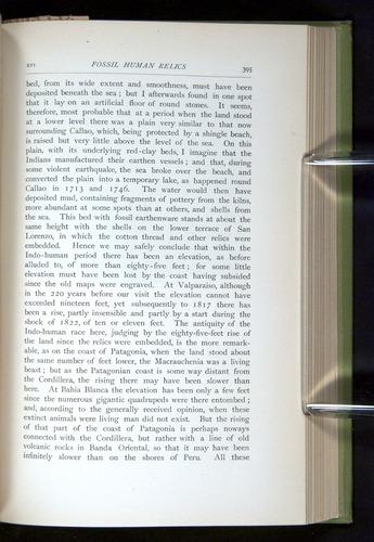 Image of Darwin-F64-1890-395