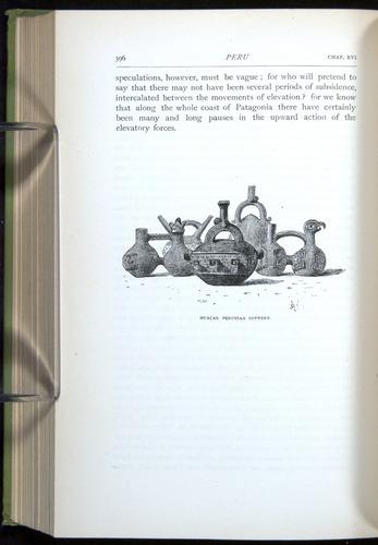 Image of Darwin-F64-1890-396