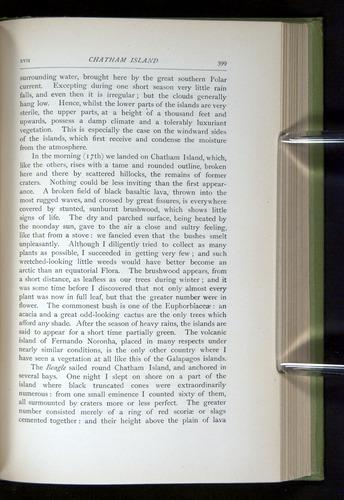 Image of Darwin-F64-1890-399