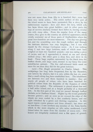 Image of Darwin-F64-1890-400