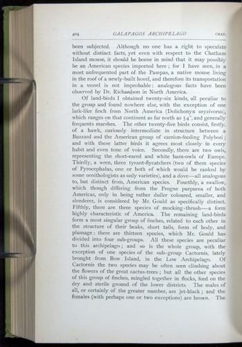 Image of Darwin-F64-1890-404