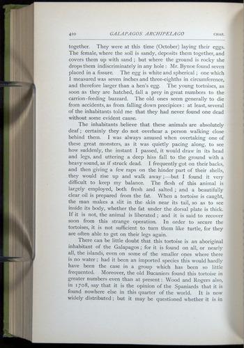 Image of Darwin-F64-1890-410