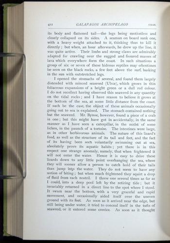 Image of Darwin-F64-1890-412