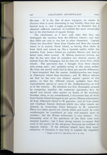 Image of Darwin-F64-1890-420