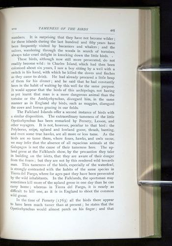 Image of Darwin-F64-1890-425