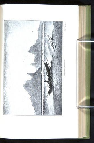 Image of Darwin-F64-1890-432-f8