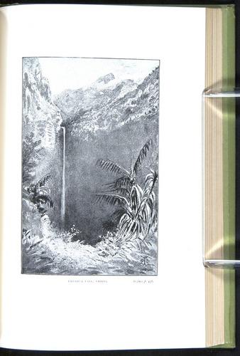 Image of Darwin-F64-1890-436-f9