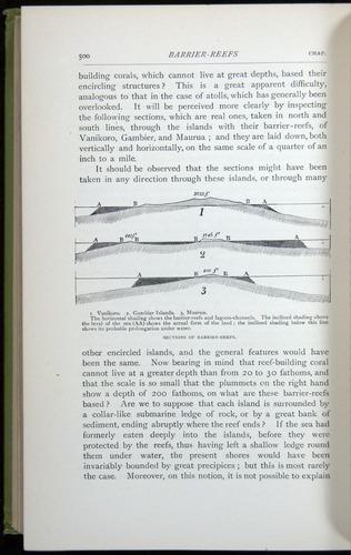 Image of Darwin-F64-1890-500