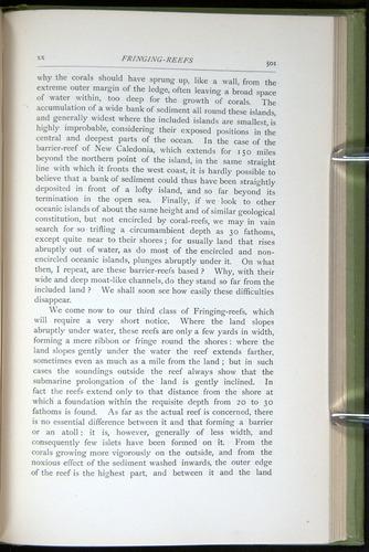 Image of Darwin-F64-1890-501