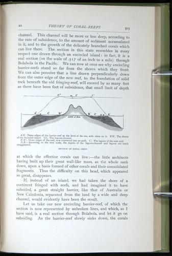 Image of Darwin-F64-1890-503