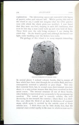 Image of Darwin-F64-1890-524