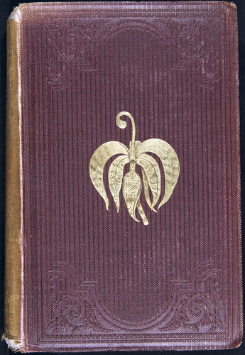 Image of Darwin-F800-1862-00000-cover