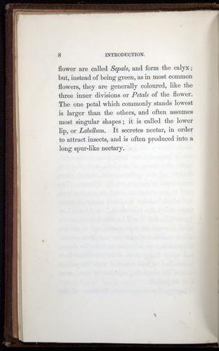 Image of Darwin-F800-1862-00008