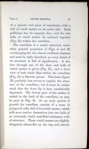 Image of Darwin-F800-1862-00011