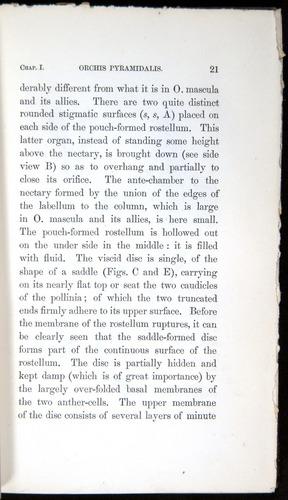 Image of Darwin-F800-1862-00021