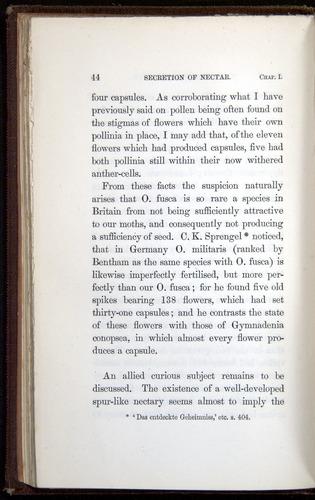 Image of Darwin-F800-1862-00044