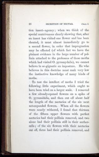 Image of Darwin-F800-1862-00046