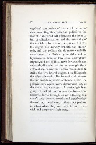 Image of Darwin-F800-1862-00092
