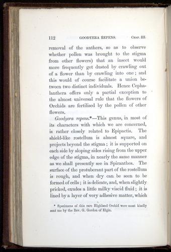 Image of Darwin-F800-1862-00112