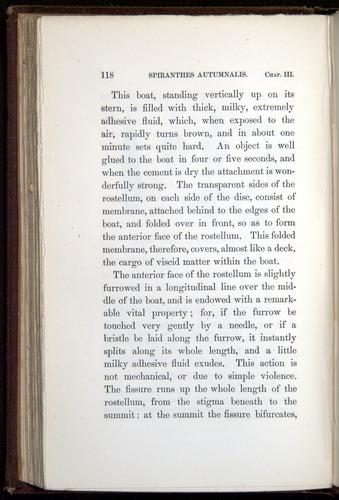 Image of Darwin-F800-1862-00118