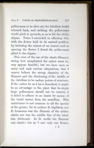 Image of Darwin-F800-1862-00177