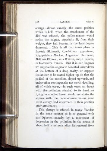 Image of Darwin-F800-1862-00188