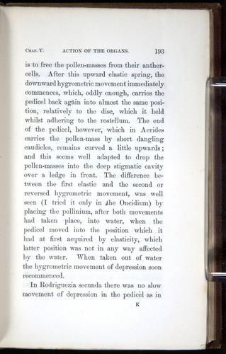Image of Darwin-F800-1862-00193