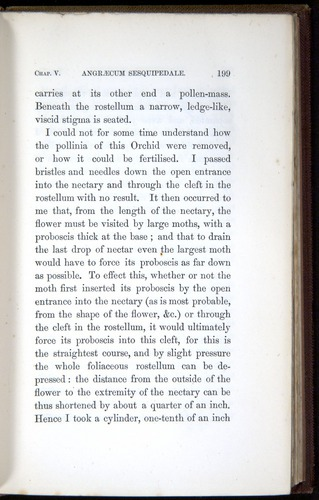 Image of Darwin-F800-1862-00199