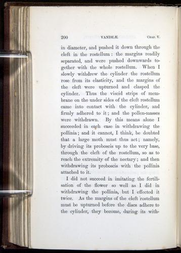 Image of Darwin-F800-1862-00200