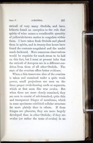 Image of Darwin-F800-1862-00207