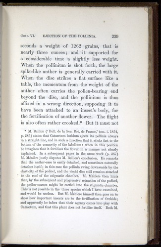 Image of Darwin-F800-1862-00229