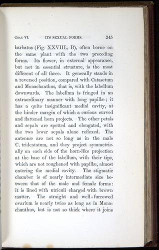 Image of Darwin-F800-1862-00245